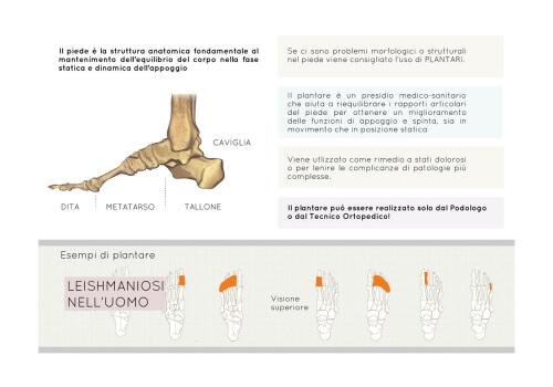 Foot and orthotics illustration