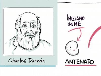 I percorsi dell'evoluzione: il cuore Darwiniano della teoria